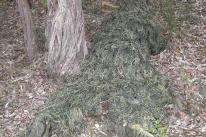 ghillie-suit copy