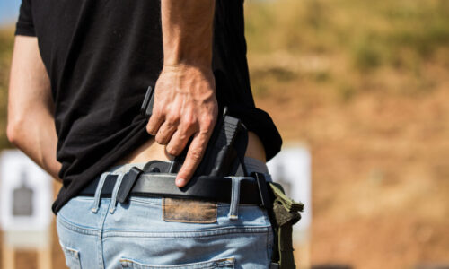 UCP Level 1 (Pistol)  Concealed Carry Weapons CCW  For Personal Protection Officers