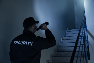 , Domestic Security
